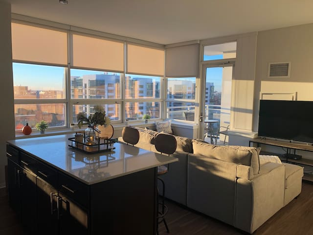 West Loop Luxury Apt near Union Station/Downtown