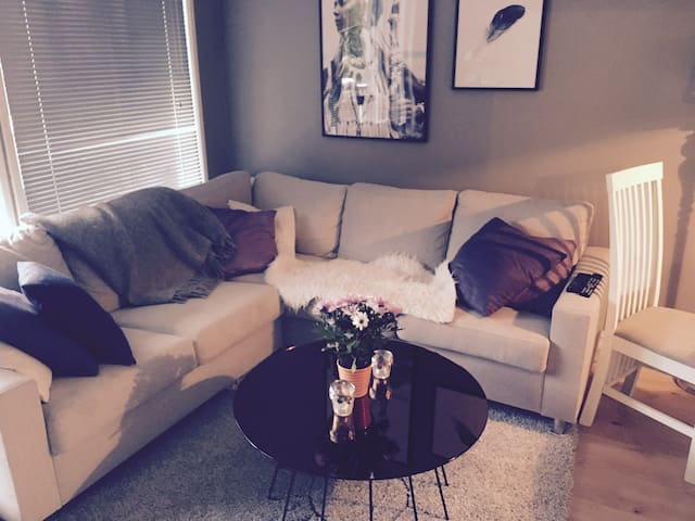 Cozy apartment in Sandvika -15 minutes from Oslo