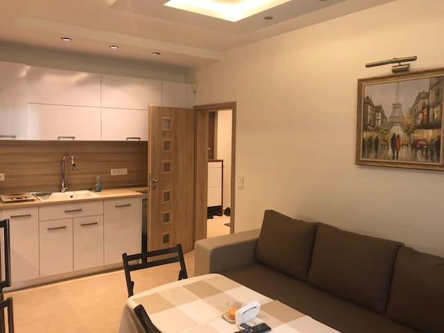 A lovely and modern apartment in central Sofia