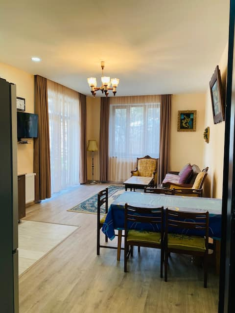 Comfortable  place in climatic spa - Abastumani