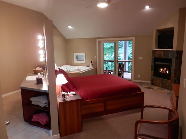 Contemporary room with whirlpool tub and fireplace - Holland - Bed & Breakfast