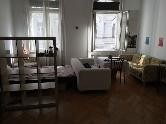 Big sunny private room in Vienna, first district