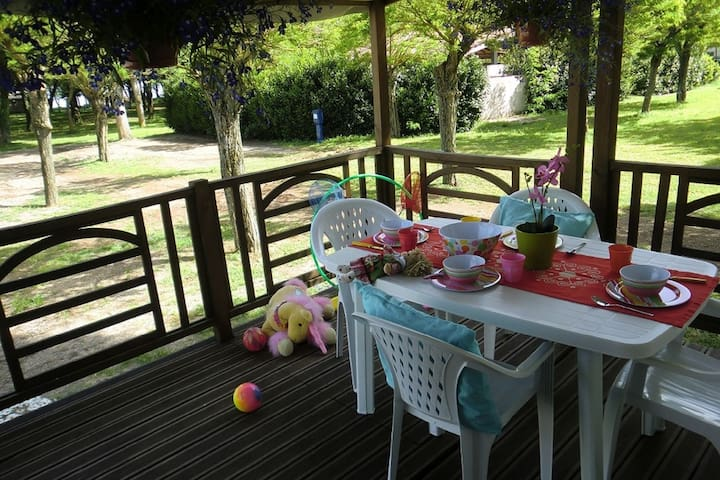 Small and cosy holiday park on the private beach of beautiful Lake Bracciano.