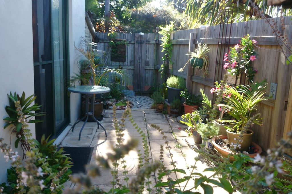 Attractive entrance courtyard from Jarman Street with beach shower outside main bedroom.