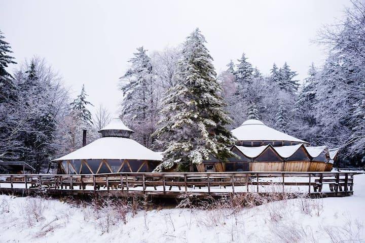 Rustic Yurt- Choose Your Own Adventure! - Circleville - Yurt