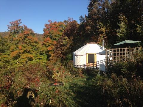 4 season Upper Yurt Stay on a VT Small Homestead