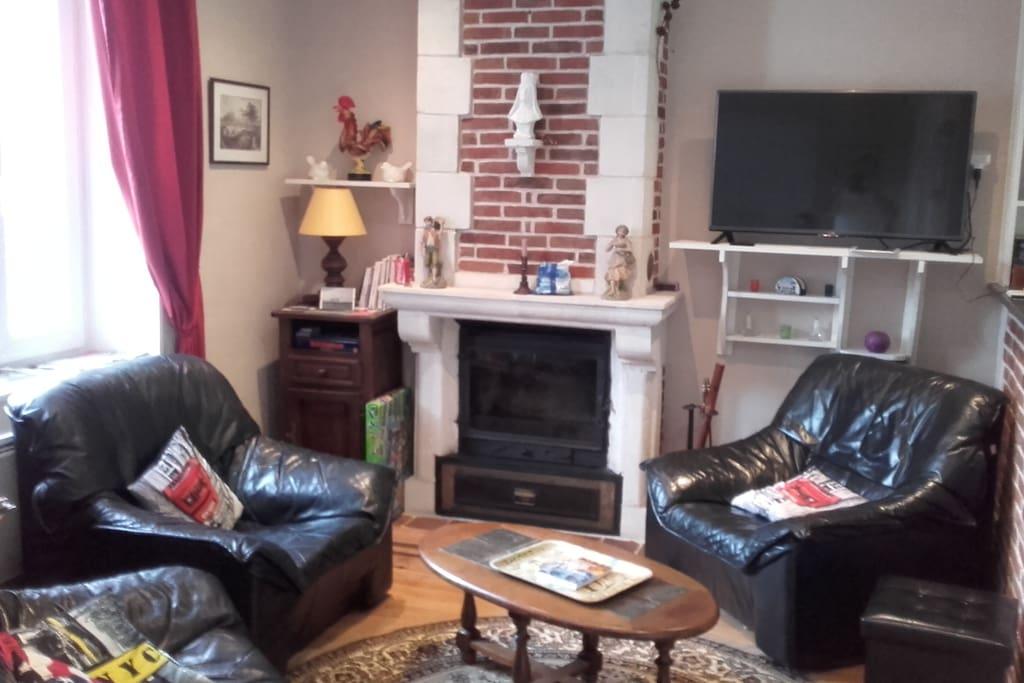 coin salon avec cheminée et télévision