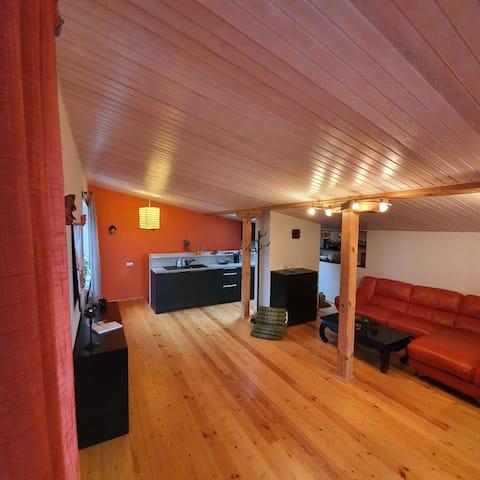 Studio + sauna + FREE airport transfer & cleaning