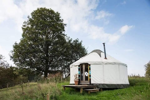 Kirklinton Hall yurt