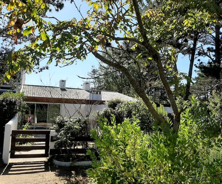 Maison rénovée avec jardin , à 300m de la plage