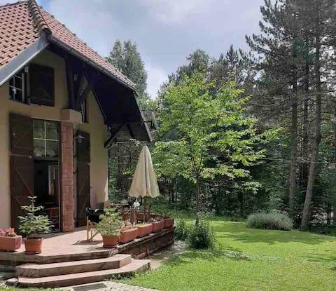 Vila Srna - kuća u planini