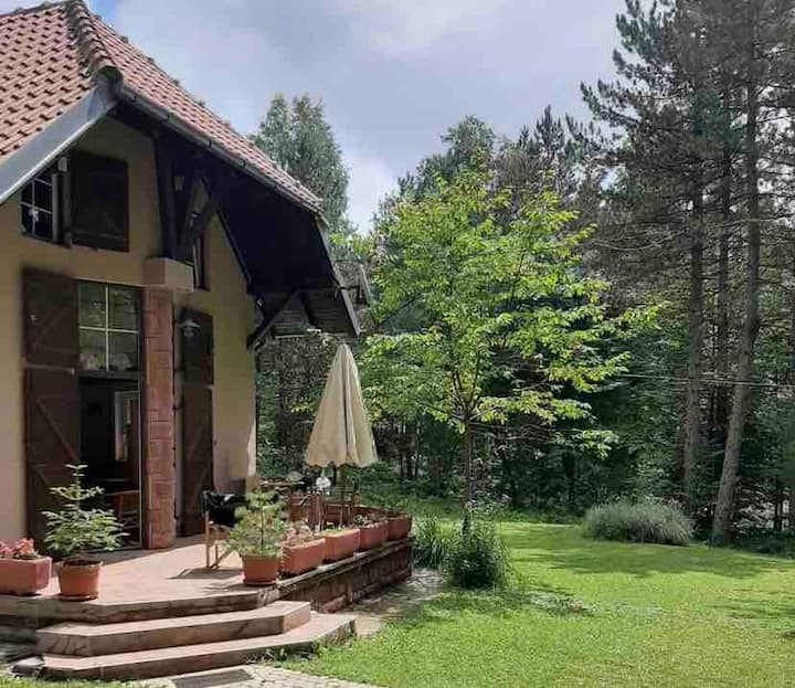 Villa Srna - house in the mountain