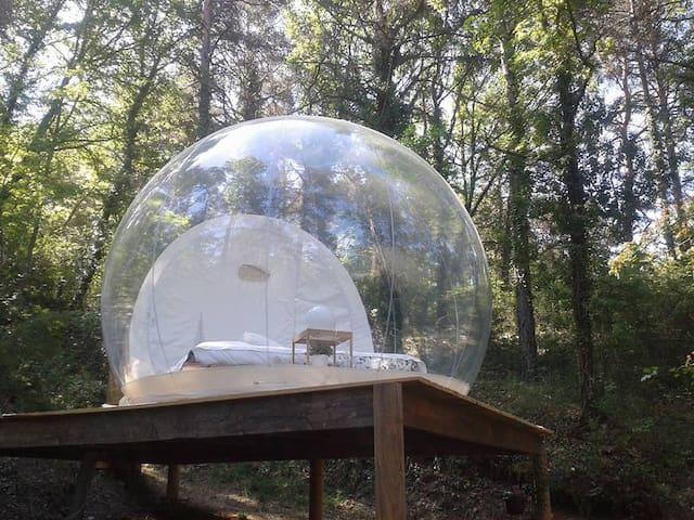 La bulle des nymphes - Mézel - Lainnya