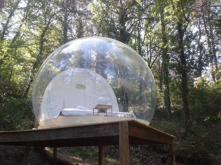 La bulle des nymphes