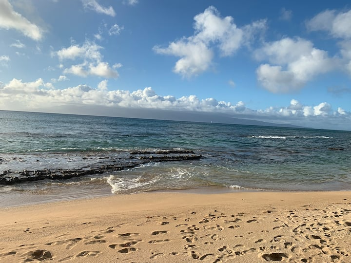 Maui Paradise - 180° Ocean View from All Rooms!