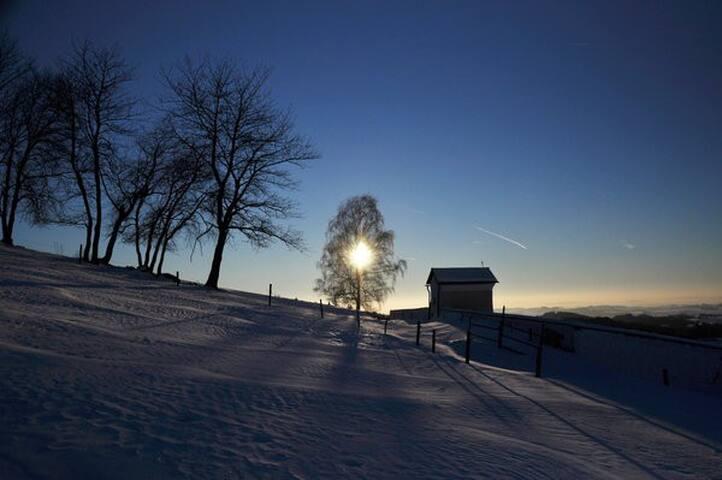 Best of Austria - Herzogsdorf
