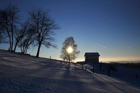 Best of Austria - Herzogsdorf - アパート