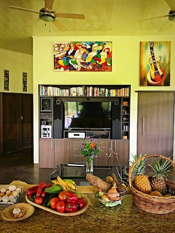Full Kitchen with island and Living Room with ROKU TV and sound system.