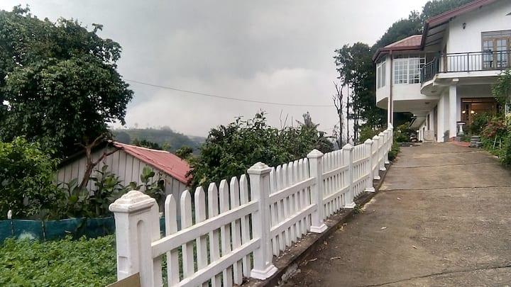 Asaliya Inn
