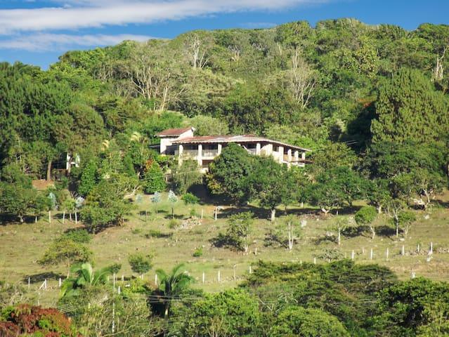 Cobblestone Farm Andes Mountains