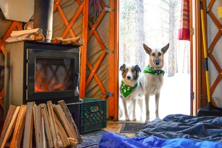 Lily Yurt - Arizona Nordic Village
