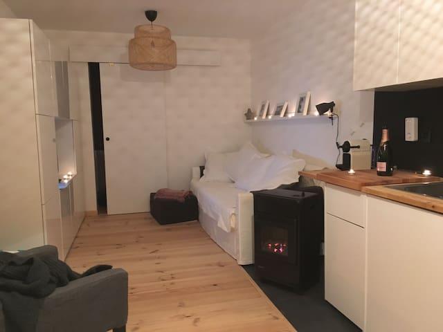 cosy studio/cabine proche monaco - Roquebrune-Cap-Martin - อพาร์ทเมนท์