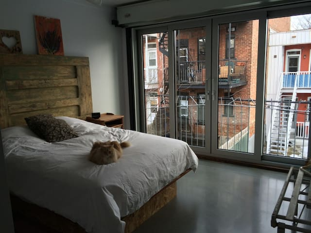 2 spacious closed bedrooms in a large loft - Montreal - Loft