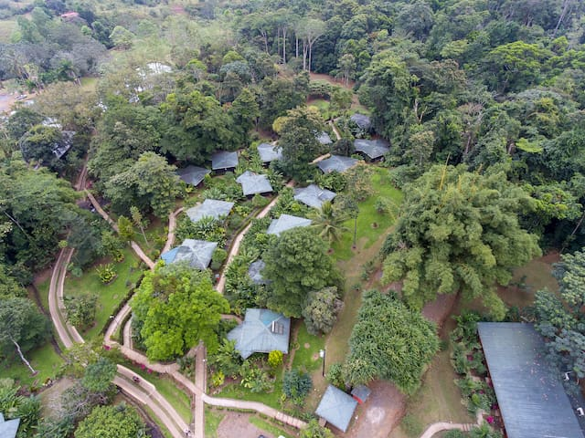 Aerial View Chachagua Rainforest Ecolodge