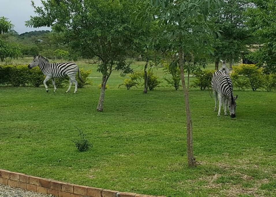 Wildlife Estate