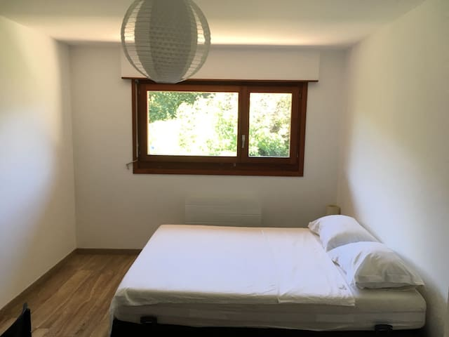 Chambre Spacieuse /Spacious Room to rent (c2)