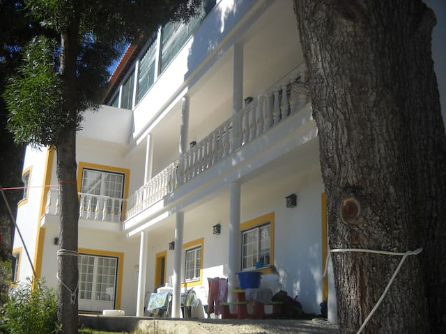 Quinta da Palmeira - Dream House