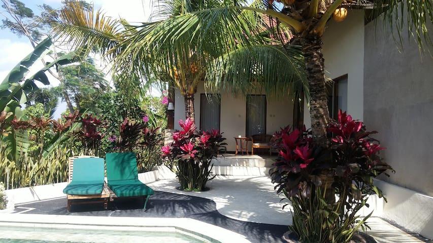 Lovely villa Jalak Putih with pool - Negara - Vila