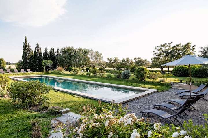 Beautiful House on Vineyard in Provence, Vaucluse
