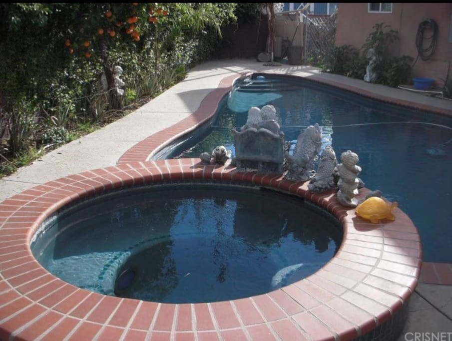 Large heated pool with solar panels and jacuzzi