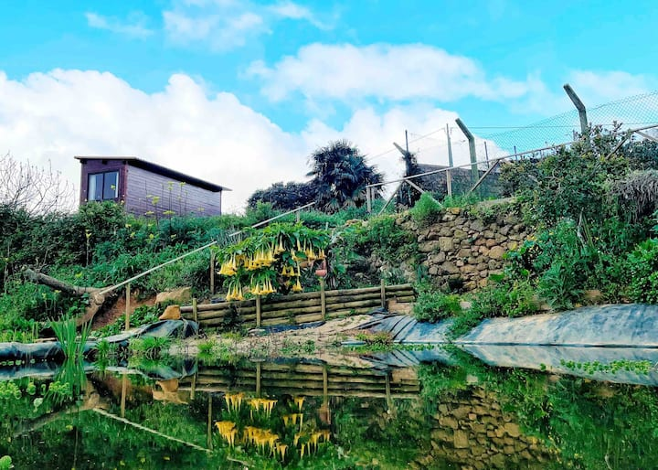 Casa de Madeira sobre o Lago