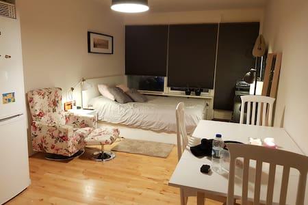 Cozy apartment Copenhagen