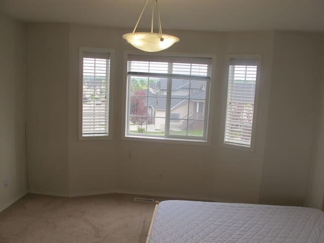 Nice and comfy south facing room in a quiet home