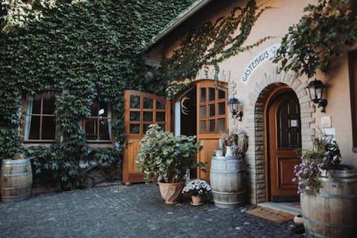 Vendersheim im Herzen Rheinhessens