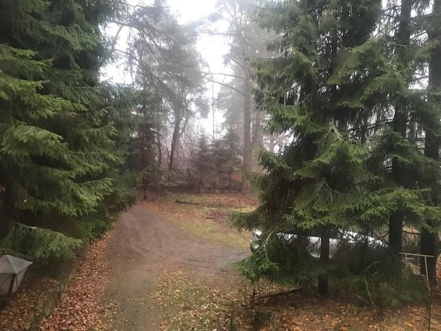 Уютный дом у озера (Сосново, 10 мин. от Игоры)
