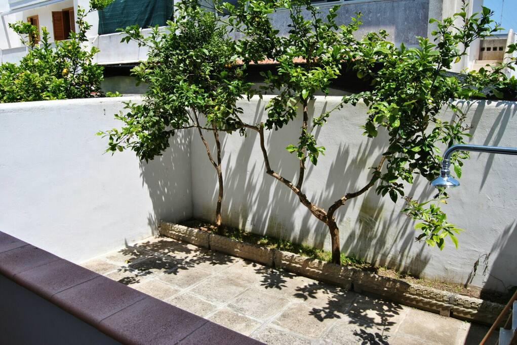 Balcone con Cortile e Doccia esterna