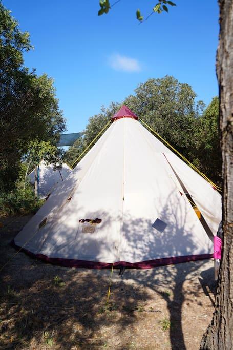 tenda tipi