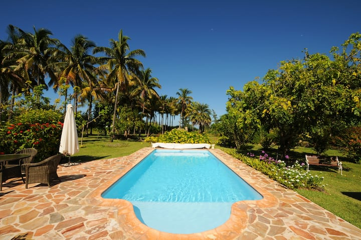 Villa La Cocoteraie private pool le Morne