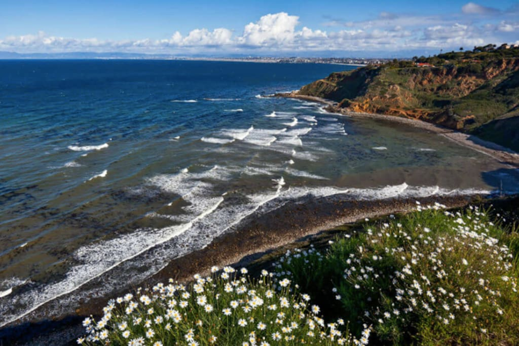 Nearby view of the Santa Monica Bay all the way to Malibu from cliffs of cliffs of Rancho Palos Verdes - a great place to hike and explore!