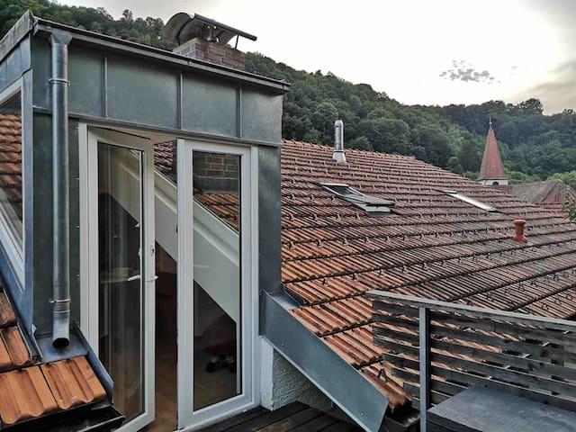 City-Loft-Wohnung in Passau/im Grünen