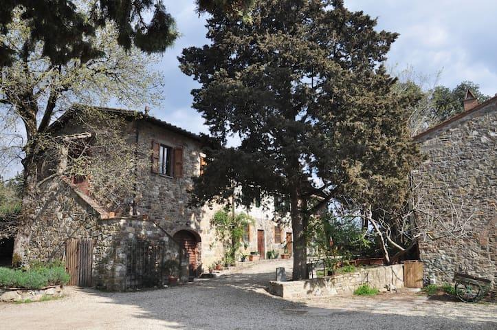 Agriturismo Valmontese - Antico Frantoio