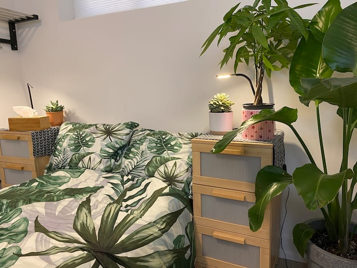 Private room filled with gorgeous tropical plants