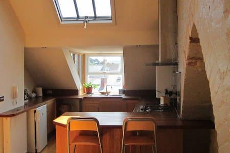 Apartment in 4 storey Victorian townhouse - Aberystwyth - Leilighet