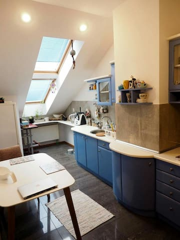 Comfy attic next to park 20 min by walk to center