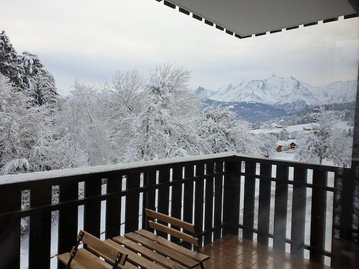 Appart cosy face au Mont-Blanc confort lumineux