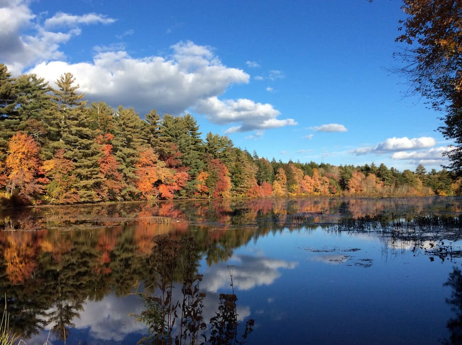 Beautiful Still Waters Pond in the fall